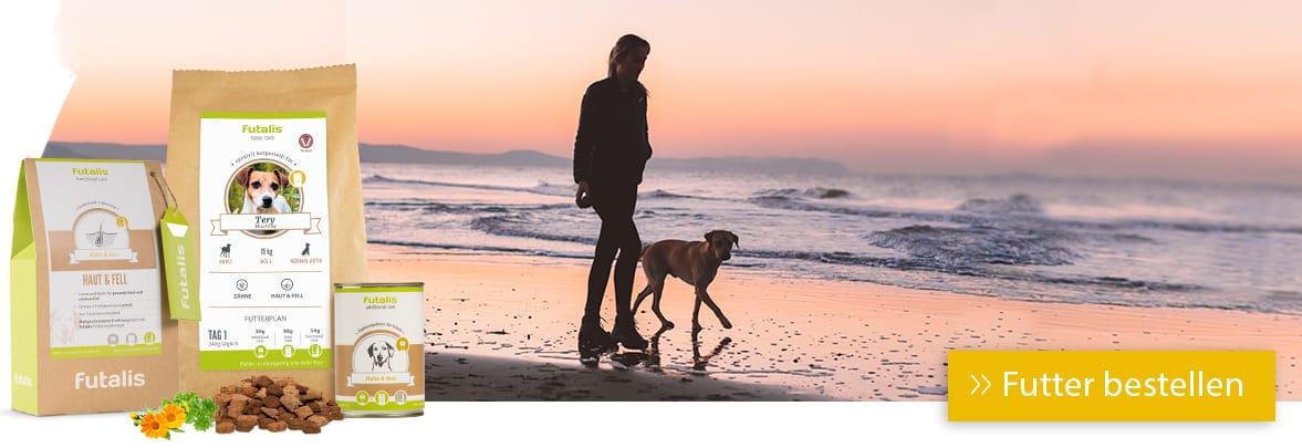 Hund am Mittelmeer: Achtung Herzwürmer