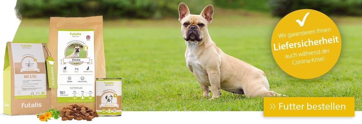 Rassefutter für Französische Bulldogge