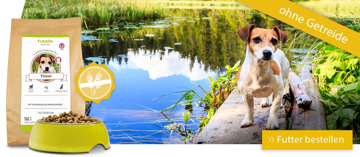 Getreidefreies Hundefutter für Ihren Hund